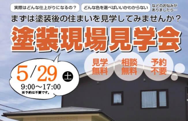 今度は5/29(土) 完成塗装見学会開催!!